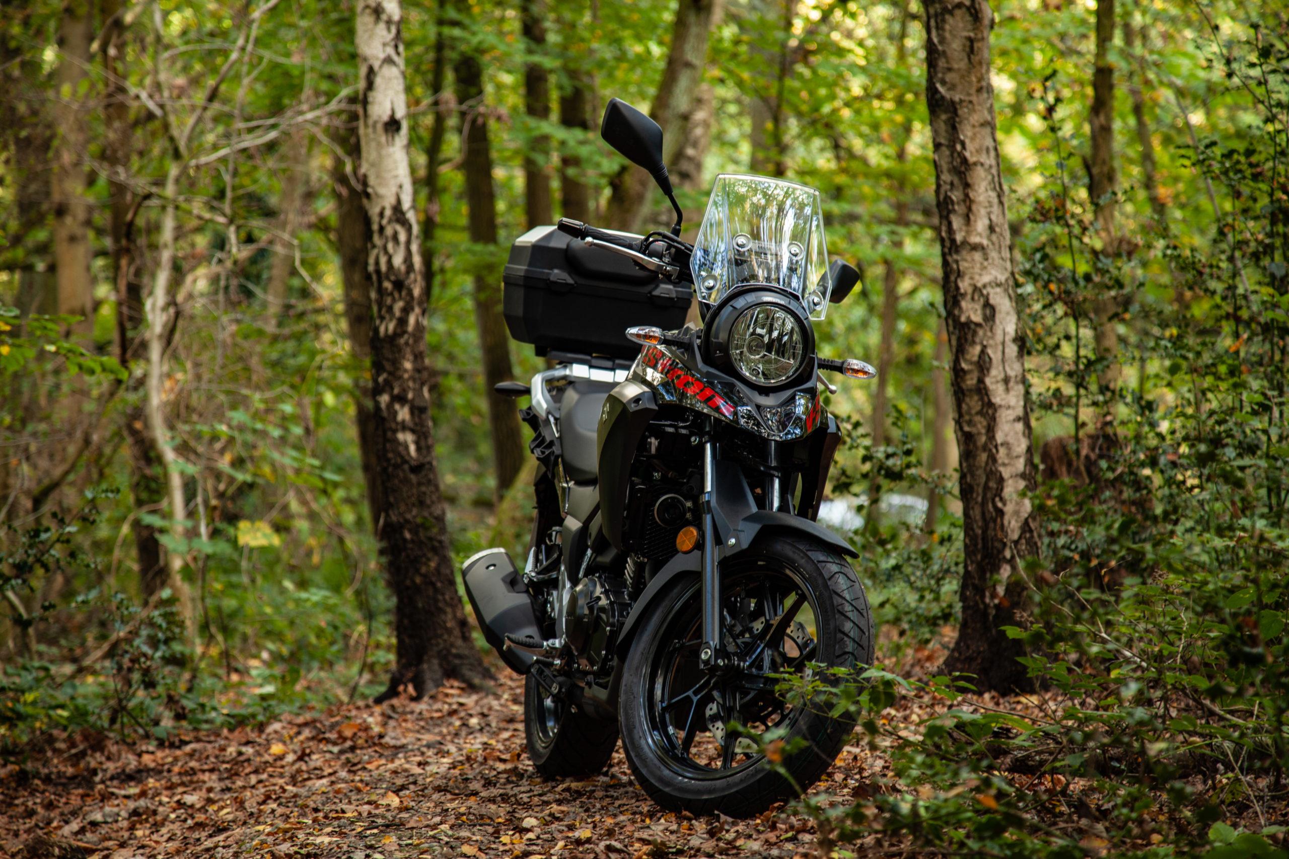 Suzuki dl250 off roading in the woods 1
